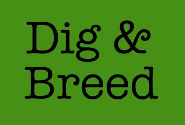 Dig & Breed